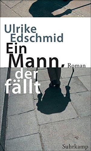 Ein Mann, der fällt: Roman