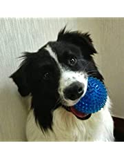 Petlicious & More Rubber Squeaky Spike Pet Dog Chew Toy Ball (Blue)