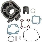 Xfight-Parts Zylinderkit Guss komplett H2o D40 Kolbenbolzen 10mm mit Dichtungen 2Takt 50ccm liegender Minarelli Motor LC Italjet Dragster