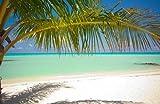 Fototapete Am Strand KT448 Größe: 400x280cm Südsee Palmen Meer
