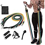 Case Plus Resistance Exercise Bands with Door Anchor, Handles, Waterproof Carry Bag, Legs Ankle Straps for Resistance Trainin