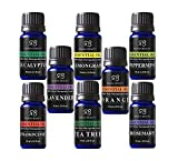 Radha Aromatherapy Essential Oils, 10ml, Pack of 6