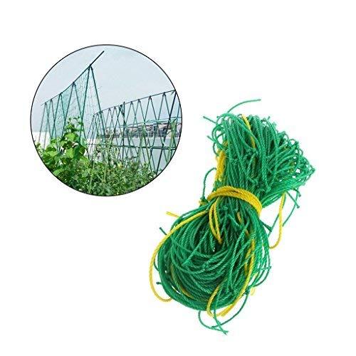 CYGQ 5,9Ft x 8.9Ft (1,8x 2,7m) Gartennetze/Anlage Klettern Netze, strapazierfähiges Nylon, Netz für Kletterpflanzen