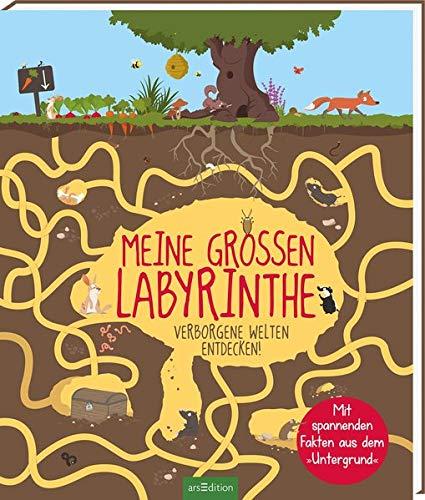 Meine großen Labyrinthe: Verborgene Welten entdecken!