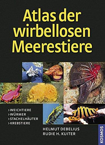 Preisvergleich Produktbild Atlas der Meerestiere - Wirbellose