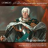 Bach Secular Cantatas Vol8