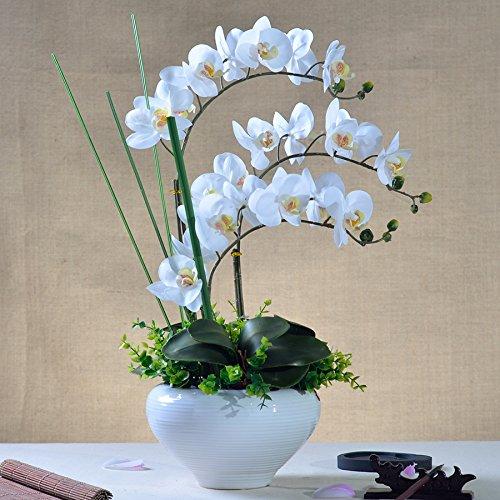 Beata.T Puthe Moth Orchid Fiori artificiali di emulazione di plastica di fiori di seta Fiori secchi Fiori decorazioni di fiori trascorrere cinese paesaggi in miniatura Home Decor,pulire il bianco)