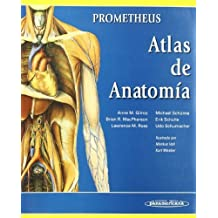 Anatomia con orientacion clinica / Clinically Oriented Anatomy (Spanish Edition) by Keith L. Moore (2009-01-30)