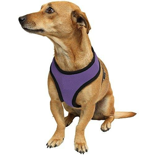 Ducomi Snoopy Pettorina Regolabile e Confortevole per Cani e Cuccioli (L, Purple)