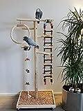 Kletterbaum für Vögel, Freisitz für Papageien, Naturholz, Freiflug Landeplatz Papageienspielzeug Papageien-Freisitz