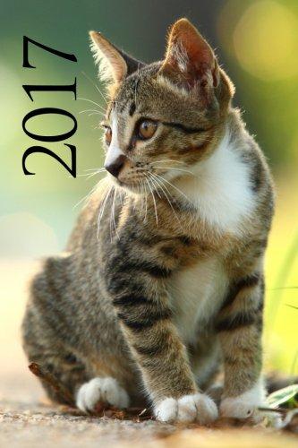Agenda 2017 (Gatos)