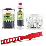 Epoxidharz-Set: 1 kg Epoxidharz Resinpal 2301