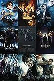 De Garçon à Magicien Harry Potter Poster Grand Format 61 x 91.5 cm