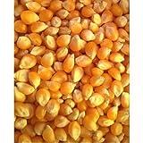 Popcorn Handy Lot en vrac 25x 1kg (total 25kg) excellent économiseur de coût. Utilisation avec nos noix de coco ou l'huile de Canola et de beurre sel. · pour une utilisation 113,4gram popcorn poppers 1/4tasse 1/2tasse du popcorn et à l'huile.* ·...