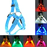 LED Nylon Pet Dog Cat Halsband Peppy Hund LED-Blinklicht Geschirr Halsband Pet Sicherheit LED Leine Seil Gürtel – (f0 m0,)
