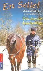 En Selle !, Tome 19 : Des chevaux dans la neige
