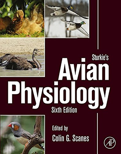 Basal Salt (Sturkie's Avian Physiology (English Edition))