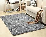 LIYINGKEJI Super weiche moderne Shag Area Teppiche, 80X120 cm, Schlafzimmer Wohnzimmer Wohnzimmer rutschfeste Boden Teppich Teppich Decke für Kinder spielen Haus dekorieren (Grau)