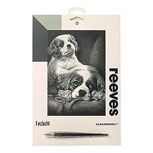 Reeves - Creatividad - Tarjeta de Raspar - Medio, plata - Spaniels