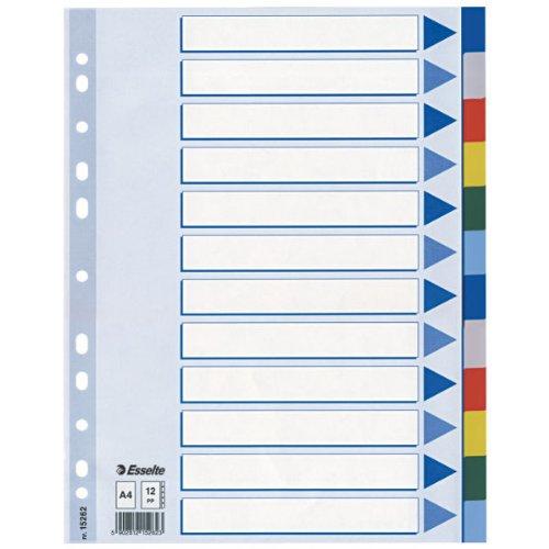 Leitz Blanko Plastikregister (Polyproplyen, A4, 12 Blatt) hellblau