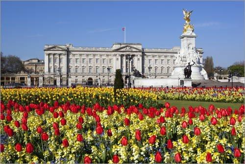 Buckingham Palace Statue (Poster 90 x 60 cm: Buckingham Palace and Queen Victoria Monument with Tulips, London, England, United Kingdom, Europe von Stuart Black/Robert Harding - hochwertiger Kunstdruck, neues Kunstposter)