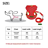 #2: Leoie Exquisite Dog Chest Leash Traction Belt Pet Harness Straps for Small Dogs Cats (L)