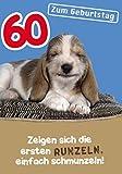 Komma3 Humor 60 Geburtstag Karte Metallic Grußkarte Birthday 16x11cm