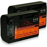 Bundle - 2x Power Batterie NP-FV50 pour Sony DCR-SR15E | DCR-SR37E | DCR-SR38E | DCR-SR47E | DCR-SR48E | DCR-SR57E | DCR-SR58E | DCR-SR67E | DCR-SR68E | DCR-SR77E | DCR-SR78E | DCR-SR87E | DCR-SR88E | HDR-XR100E | HDR-XR105E | HDR-XR106E | HDR-XR150E | HDR-XR155E | HDR-XR160E | HDR-XR200E | HDR-XR200VE | HDR-XR350E et bien plus encore...