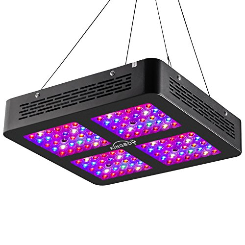 KINGBO Dual Optical Lens-Series 600W LED Grow Light Review - Winner of our best pick for performance and affordability. All round good performer and gives a good coverage.
