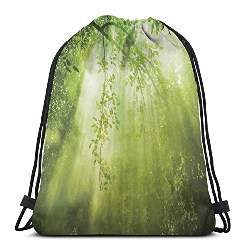 BBABYY Printed Drawstring Backpacks Bags,Rays of Sun Light Deep Dark In The Forest In Foliage with Dynamic Effects Decor,Adjustable String Closure - Chanel Bag Light