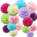 Time to Sparkle 16 Pièces Mix Tissu Papier Pompons Boules de Fleurs Papier de Soie Mariage Fête décoration, Poms Bright Shade