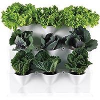 Minigarden 1 Juego Vertical para 9 Plantas, jardín Vertical Modular y Extensible, para Colocar en el Suelo o Colgar en la Pared, Mecanismo de Drenaje Innovador, Largo Ciclo de Vida (Gris)