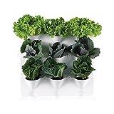 Minigarden Vertical 1 Set für 9 Pflanzen, erweiterbarer vertikaler Garten im Baukastensystem, freistehend am Boden aufstellbar oder zur Wandmontage, innovatives Abflusssystem, lange Lebensdauer (Weiß)