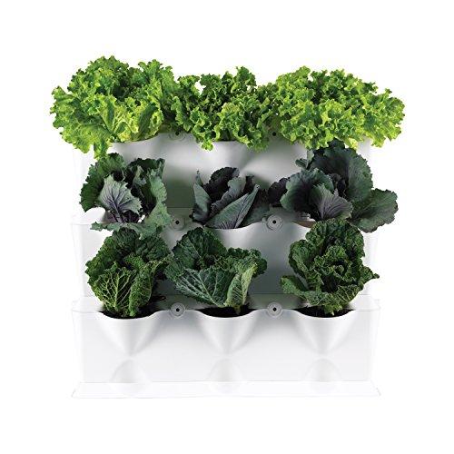 Minigarden 1 Juego Vertical para 9 Plantas, jardín Vertical Modular y Extensible,...