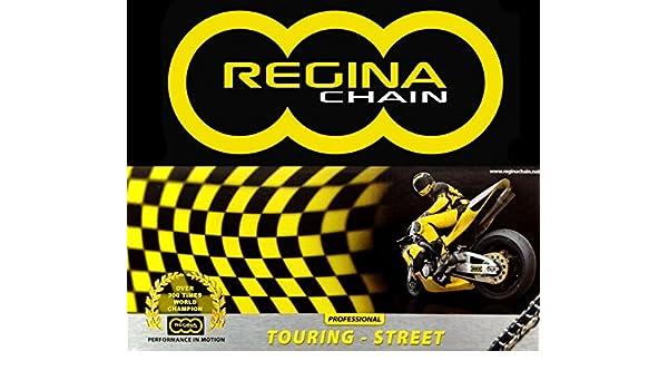 CATENA TRASMISSIONE REGINA 520 ORT2 120 MAGLIE PROFESSIONAL TOURING-STREET