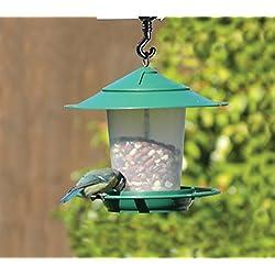 Farol colgante pájaro semillas-Comedero para pájaros, color verde