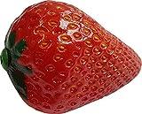 Scott Strawberry - Coctelera
