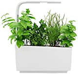 Tregren T6 Potager d'intérieur Connecté 6 plantes, Kit prêt à pousser et Jardinière Autonome pour herbes aromatiques, petits légumes, fleurs - Cultivez avec votre application smartphone - Blanc