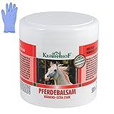 Kräuterhof Pferdebalsam wärmend extra stark 500 ml + 10 Handschuhe