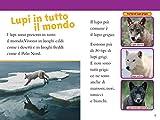 Lupi-Livello-3-Ediz-illustrata