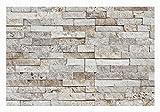 W-013 Wanddesign Verblender Travertin Steinwand Wandverkleidung -1 Muster - Naturstein Fliesen Lager Verkauf Stein-Mosaik Herne NRW