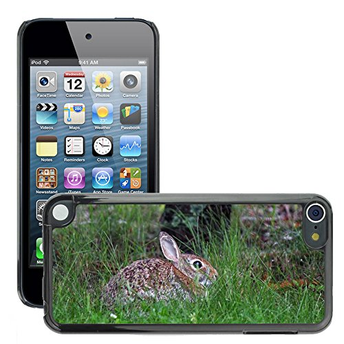 hello-mobile Bild Hart Handy Schwarz Schutz Case Cover Schale Etui // M00137678 Bunny Rabbit Natur Hare Tier // Apple ipod Touch 5 5G 5th