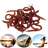 Broadroot da pesca morbido silicone esca artificiale odore Red Worm esche da pesca alla carpa, Red Worm