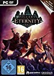 Pillars Of Eternity [Importaci...