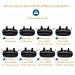 WIZCO-Barking Control Collar. Stops Dogs Barking Humanely 8