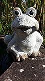 Gartenfigur niedlicher Frosch sitzend Garten Figur Tier