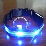 Yosoo Haustiere Hund LED Lichter Blitz Nylon Halsband Nacht Sicherheit wasserdichte verstellbare S-XL (Blau, L)