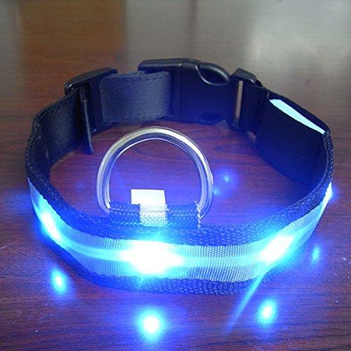 Yosoo Haustiere Hund Led Lichter Blitz Nylon Led Halsband Nacht Sicherheit Wasserdichte Verstellbare S Xl Blau S