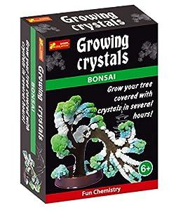 NEO+ - Crecimiento de Cristales, bonsái (12160043A)
