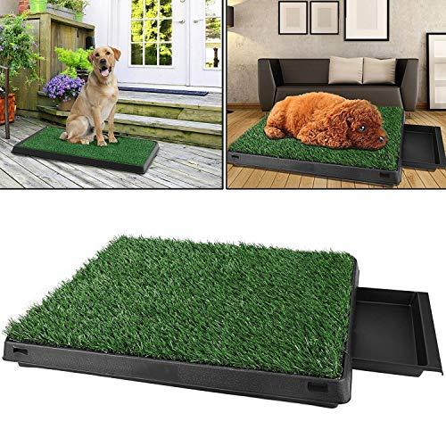 Pujuas Hundetoilette für Hunde, Hundeklo Hunde WC, Welpentoilette Trainingsunterlage Gras mit Kunstrasen 63 x 50x 7(L x B x H) cm